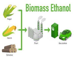 Biogasprozess in Biogasanlagen